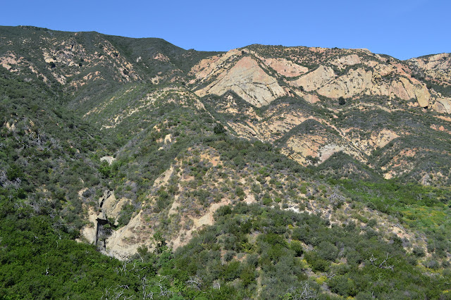backdrop of rock slabs and chaparral