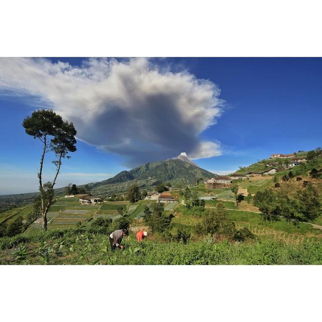 Imbas Letusan Freatik Gunung Merapi 5 Obyek Wisata di Kawasan TNGM di Tutup Sementara