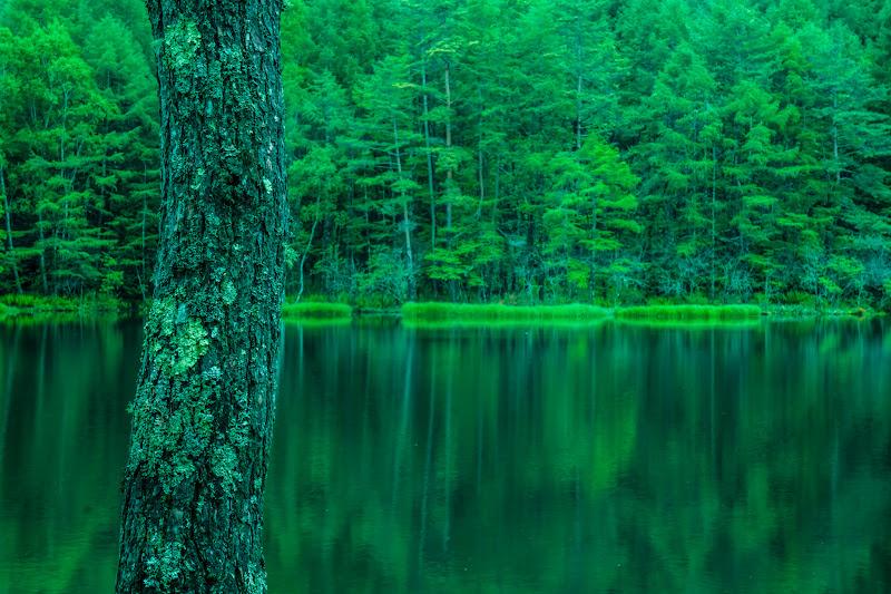 Mishaka Pond photo18
