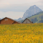 26 maggio - 3 giugno 2012: sulla Jakobsweg svizzera da Einsiedeln a Thun