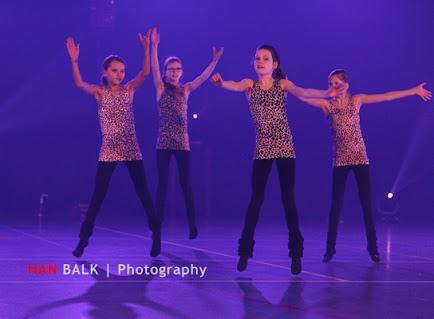 Han Balk Voorster dansdag 2015 ochtend-1916.jpg