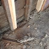 Renovation Project - IMG_0172.JPG