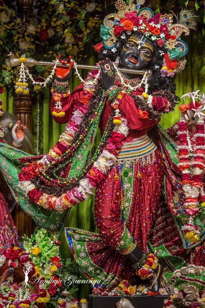 ISKCON Mayapur Deity Darshan 14 Jan 2017 (14)