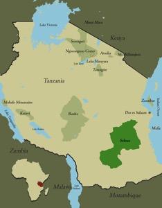 Map tanzania selous