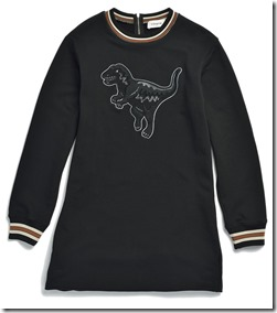 55004 Varsity T-Rex Sweatshirt Dress - BKWT