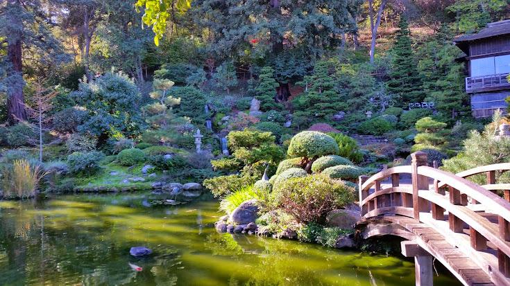 茶の湯 in サンフランシスコ ・ Japanese Tea Ceremony を San Franciscoで箱根茶会・Hakone ChakaiPost navigation