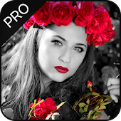 Color Splash Effect Editor : Splash Effects