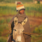 AD21 Boy on Donkey early morning light.jpg