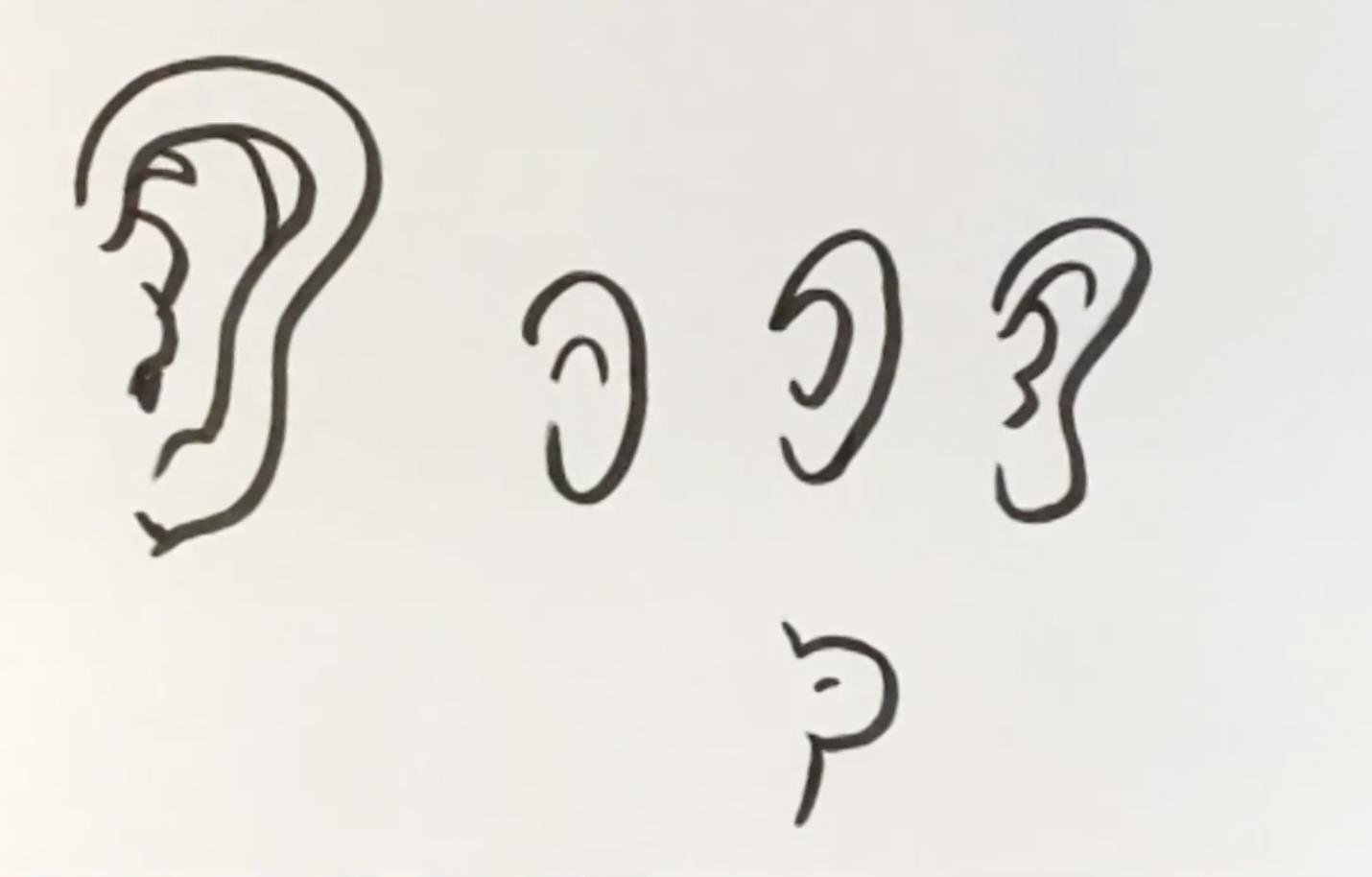 cartoon ears