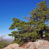 11-09-13 Wichita Mountains Wildlife Refuge - IMGP0369.JPG