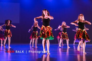 Han Balk Voorster Dansdag 2016-4477-2.jpg