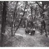 n029-003-1966-tabor-sikfokut.jpg
