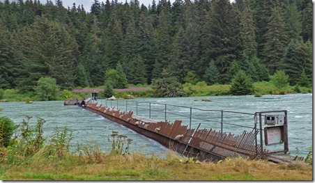 Chilkoot River Salmon Counter