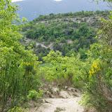 Hautes-Courennes (500 m). Saint-Martin-de-Castillon (Vaucluse), 7 mai 2014. Photo : J.-M. Gayman