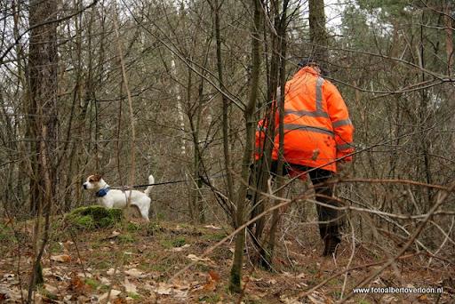 vossenjacht in de Bossen van overloon 18-02-2012 (40).JPG