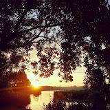 Delftse Hout zonsondergang