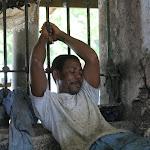 Zanzibar napper 3055798600.jpg