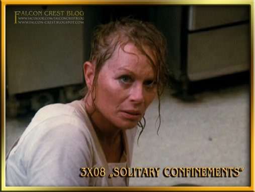 3x08 Solitary Confinements #048