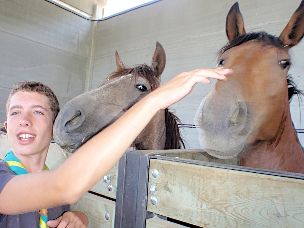 Campaments dEstiu 2010 a la Mola dAmunt - campamentsestiu426.jpg