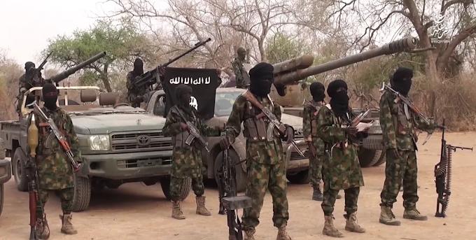 Disheartening! Boko Haram Reportedly Beheads 43 Farmers In Borno