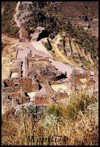 Un mois aux pays des Incas, lamas et condors (Pérou-Bolivie) - Page 2 CD2%2520%252837%2529