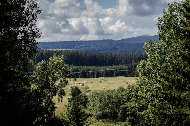 Photowalk Harz - Mandelholz