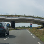 20180623_Netherlands_275.jpg