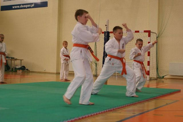 DO 2011 Pokaz karate - DSC00089_1.JPG
