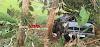 Alta Floresta – Motorista fica ferido após caminhonete sair da pista e bater em árvore na RO 383