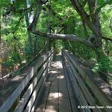 04-04-12 Hillsborough River State Park - IMGP9676.JPG