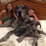 "Zoey & Zeus Jaeger with ""their"" kids:-)"