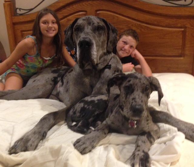 """Zoey & Zeus Jaeger with """"their"""" kids:-)"""