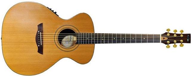 Vintage Gordon Giltrap Signature Ve2000GG Acoustic-Electric Guitar