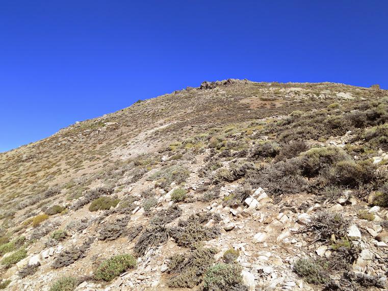 20150329 - CHILE - CERRO CANOITAS. IMG_0023