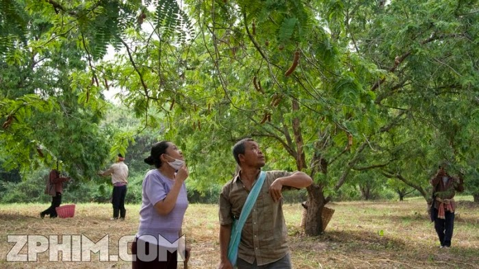 Ảnh trong phim Quá Khứ Của Boonmee - Uncle Boonmee Who Can Recall His Past Lives 2
