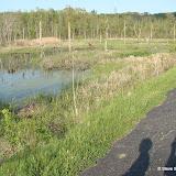 Bike Trail - DSC05905.JPG