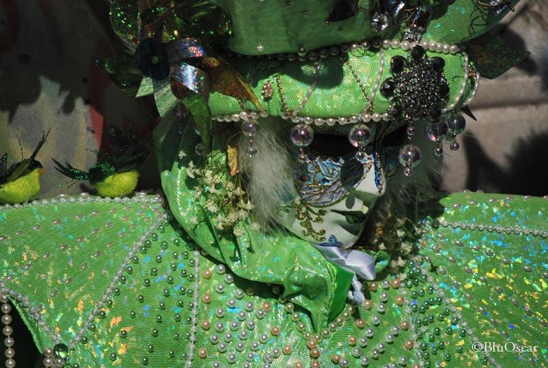 Carnevale di Venezia 05 02 09 N11