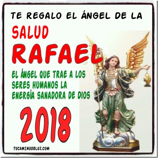 angel salud 2018