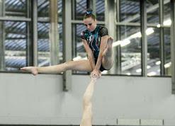 Han Balk Fantastic Gymnastics 2015-9735.jpg