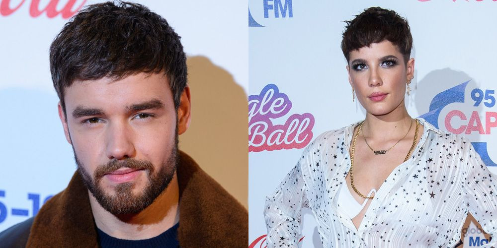 26-year-old American singer, Halsey has splurged $10,161,150 for One Direction's Liam Payne's oasis in Calabasas.     Halsey's new five-bedroom, six-bathroom mansion is 9,659 sq. feet spread over 4.75 acre tucked away in the hills above Malibu.     Singer, Halsey buys One Direction     The house is equipped with a number of indoor amenities including a recording studio, library, wine cellar and home theater; and on the outside, a sanctuary area with a koi pond and waterfalls.     It is also gated and has a guard house, with a path including rows of trees and a bridge leading to the main property.     Singer, Halsey buys One Direction     The outdoor area has a sanctuary area that has a guest bedroom, an equipped home gym, an area for meditation and massages with idyllic views.      Payne paid $10 million for the home in 2015 before putting it up for sale about 3 years ago. He initially asked for $14 million before dropping the price to $13 million and eventually $10.5 million.      Here are more photos below;      Singer, Halsey buys One Direction  Singer, Halsey buys One DirectionSinger, Halsey buys One Direction  Singer, Halsey buys One DirectionSinger, Halsey buys One DirectionSinger, Halsey buys One DirectionSinger, Halsey buys One Direction  Singer, Halsey buys One DirectionSinger, Halsey buys One DirectionSinger, Halsey buys One Direction  Singer, Halsey buys One Direction