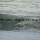 _DSC5875.thumb.jpg
