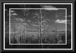 Black White Framed Photographs