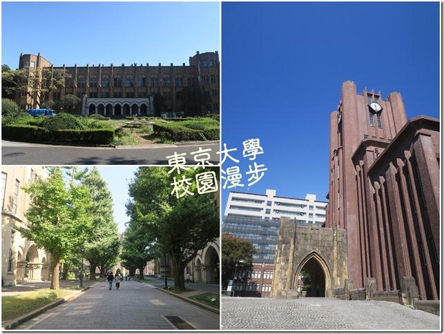 東京大學 (42)