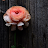 Michelle Medina-Chan avatar image