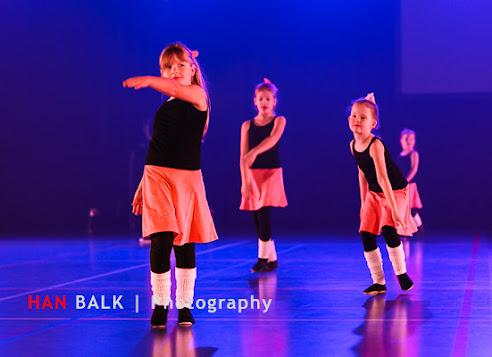 Han Balk Voorster Dansdag 2016-4496-2.jpg