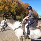 Oct-Nov 2013 - 2012-04-16%2B04.45.15.jpg