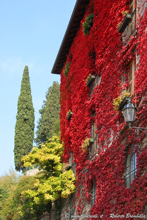 [2_Varenna-colori-autunno_0206]