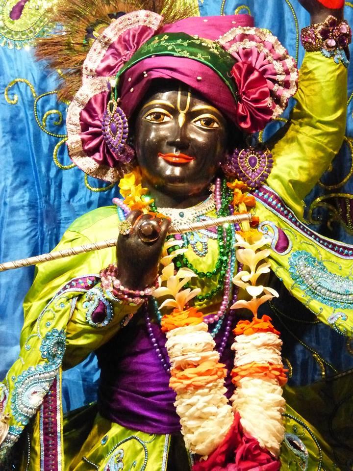 ISKCON New Govardhan Deity Darshan 01 Mar 2016 (17)