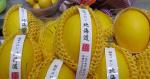 賣假北海道蜜瓜 生果商販認罪罰6000元
