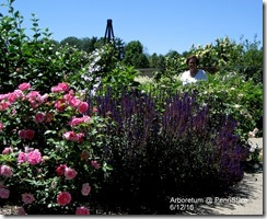 Connie @ Arboretum @ PennState